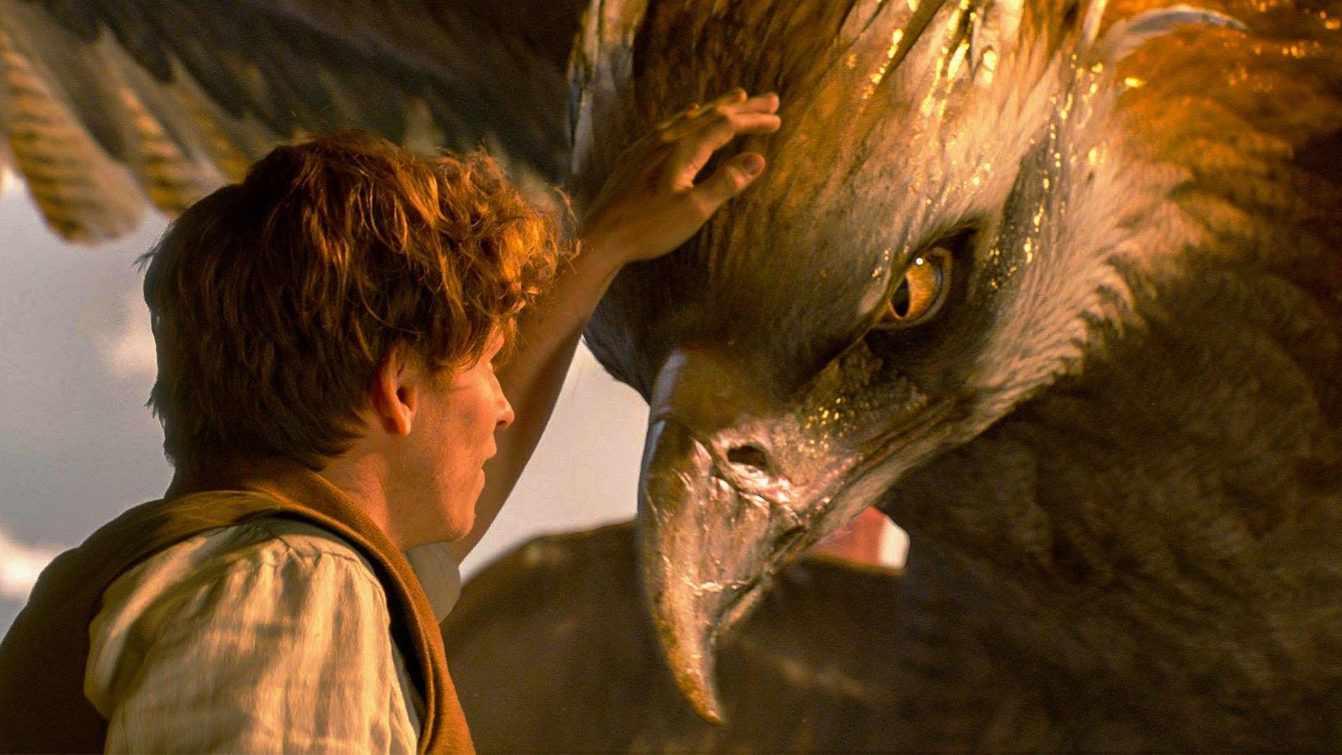 Čudesne zvijeri i gdje ih naći pokorile Rotten Tomatoes