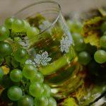 Šestero moslavačkih vinara dobili prve G.E.T. STARS oznake za vinarije
