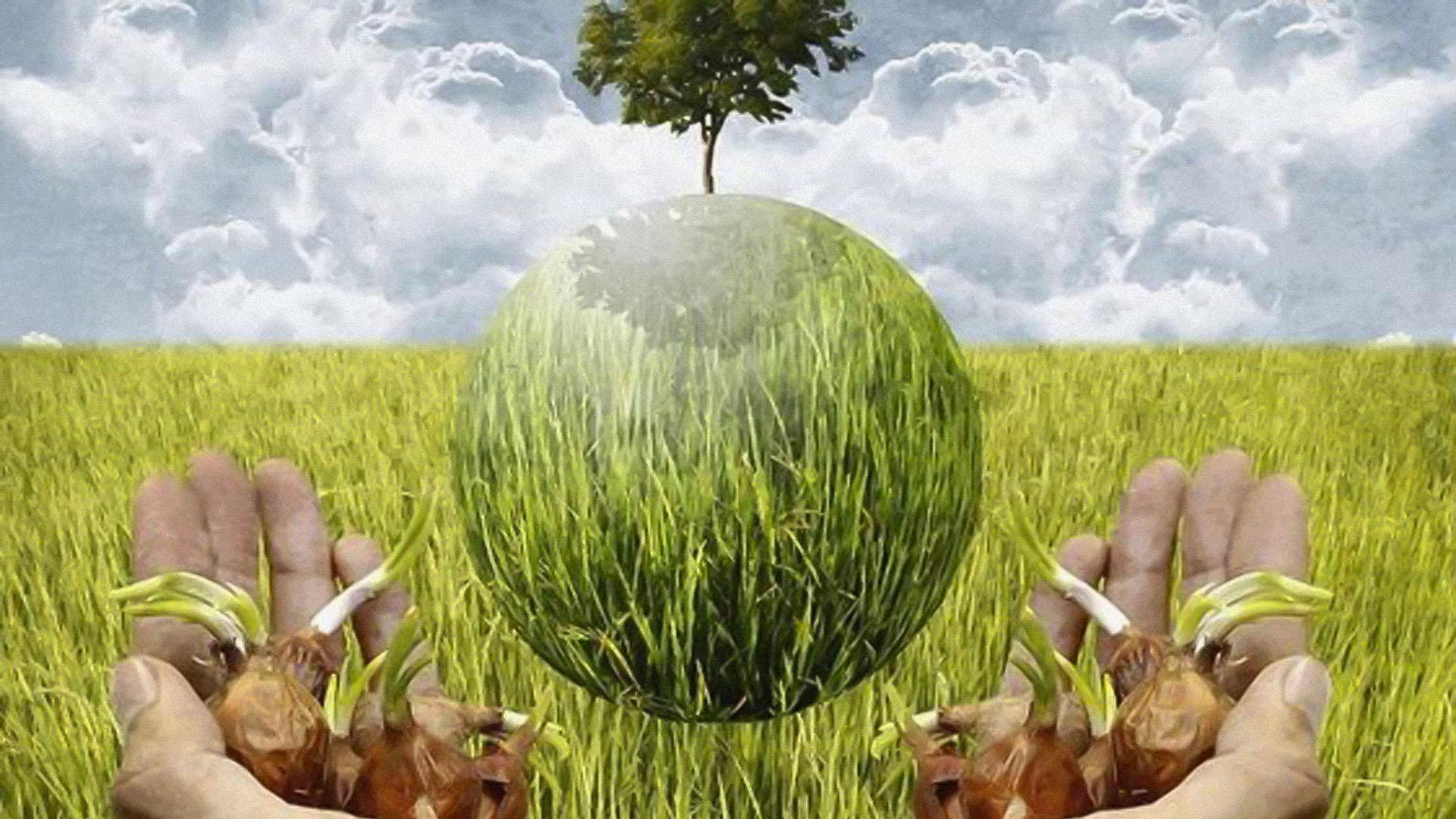 Potpore obiteljskim poljoprivrednim gospodarstvima