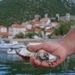 Hrvatske delicije ugrožene dramatičnim padom turizma