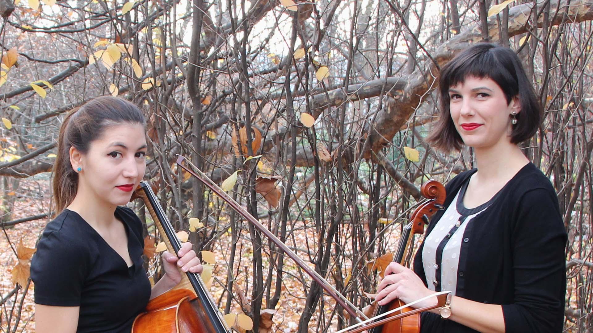 Pavle Dešpalj i Zadarski komorni orkestar donose atraktivan komorni koncertni program!