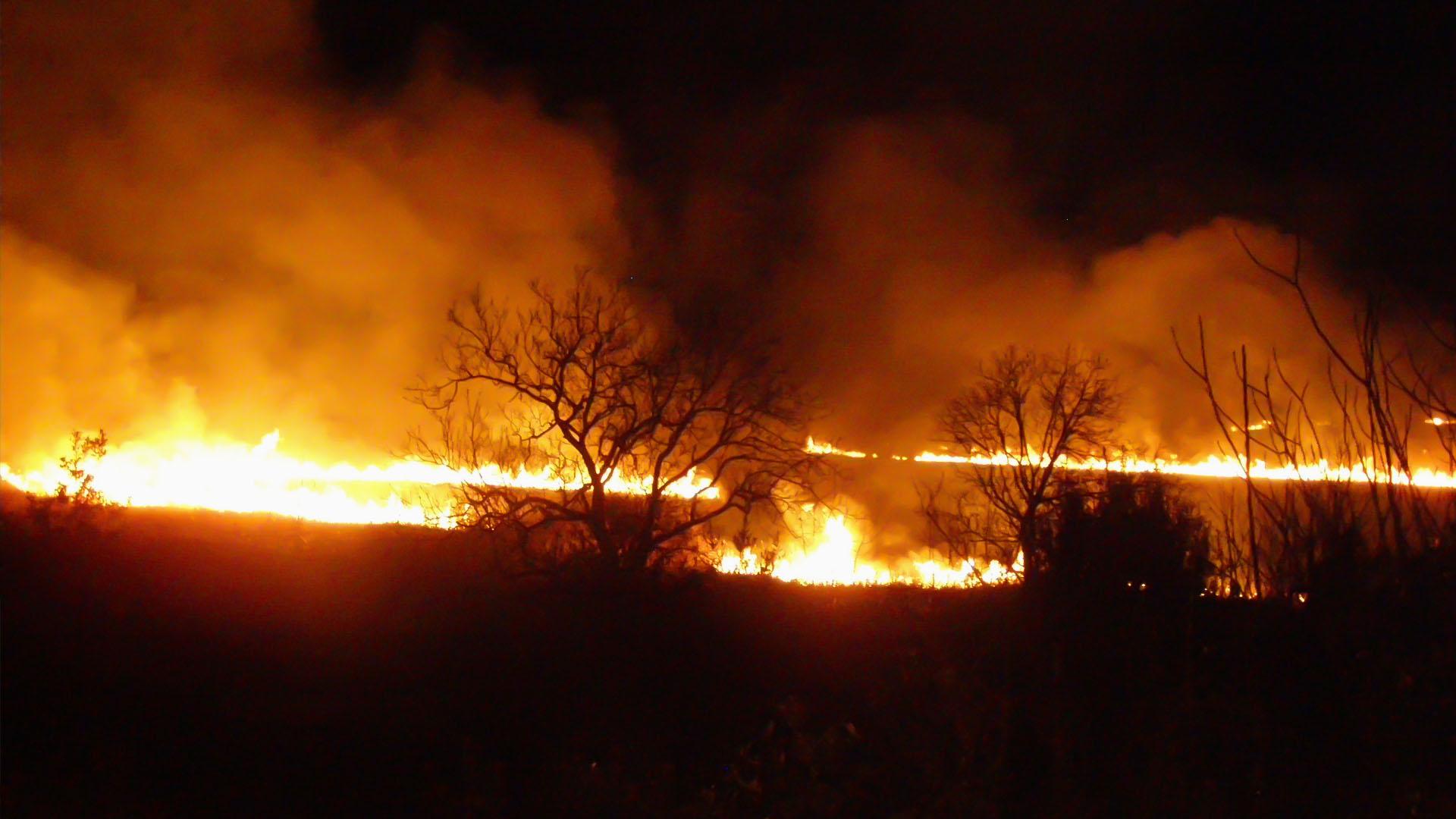 Spasimo prirodne vrijednosti u Delti rijeke Neretve od požara